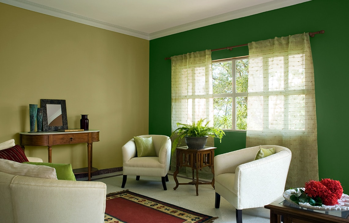 Royal Paint Colour Combination For Living Room